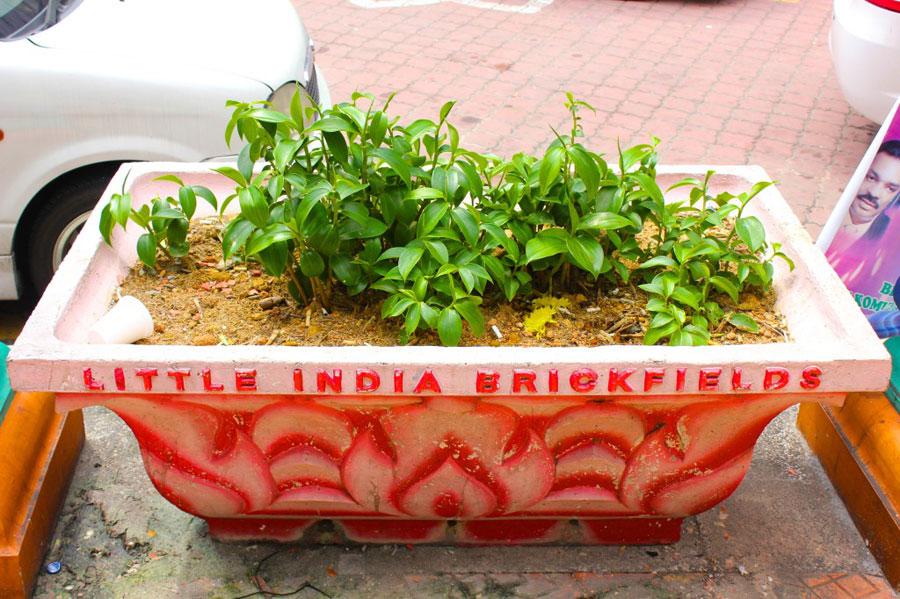 little-india3
