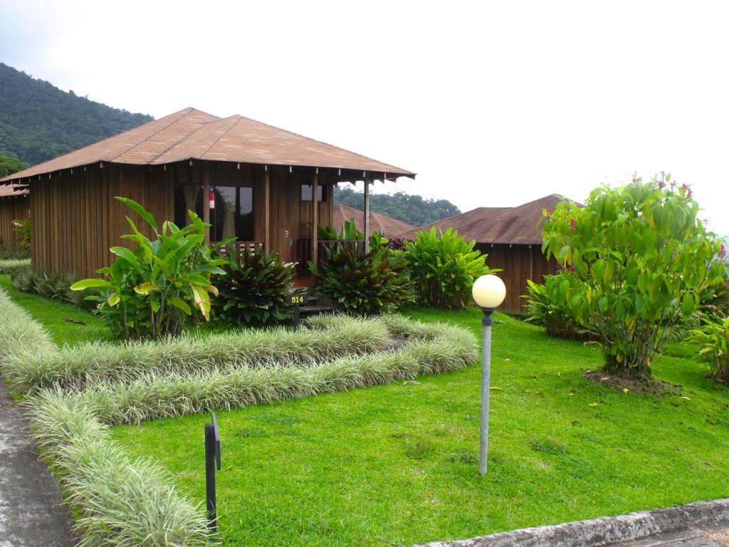 lomas-del-volcan2