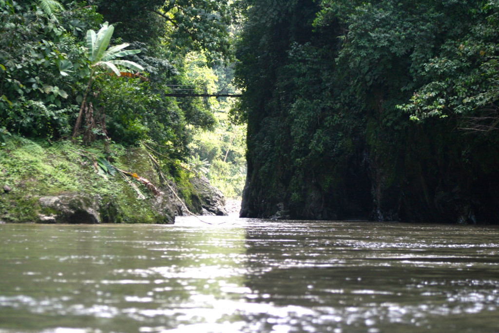 pacuare-river-1