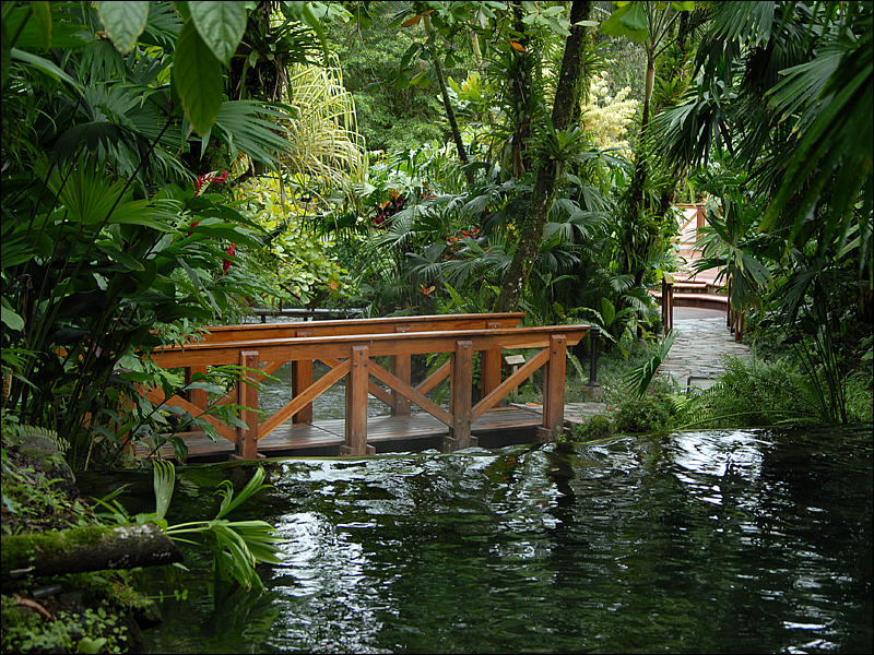tabacon-hot-springs1