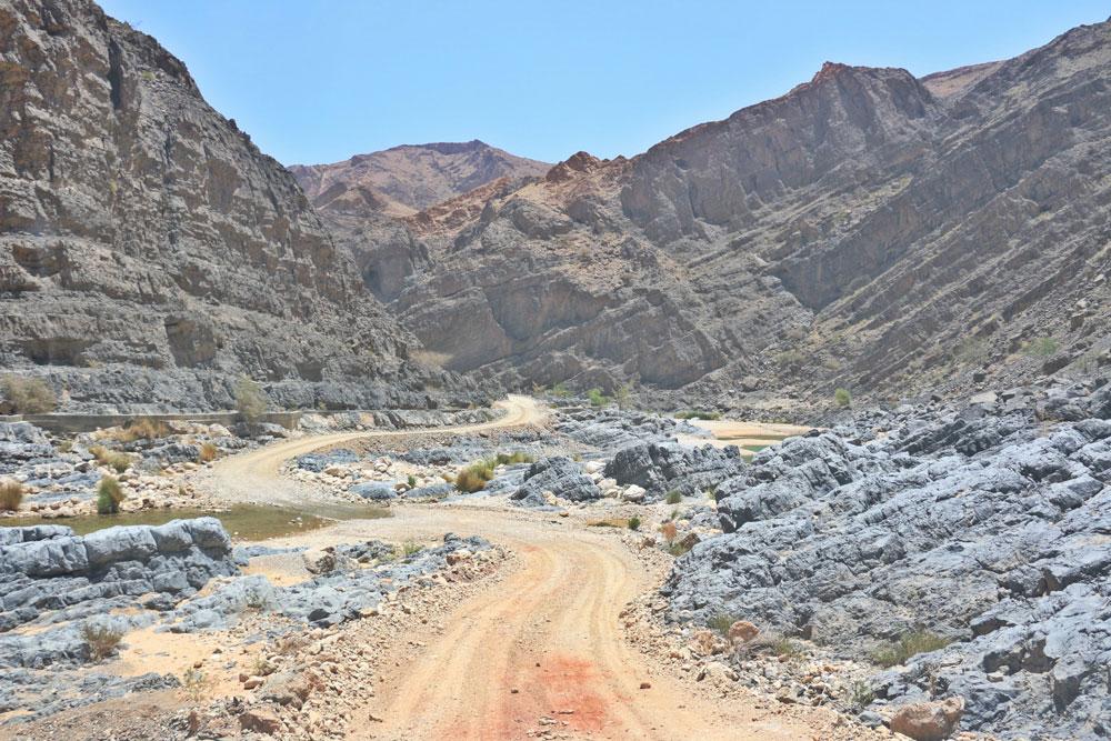 wadi-arbeieen1