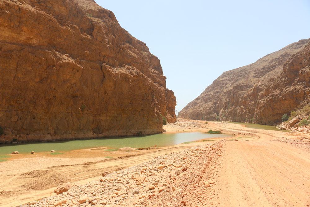 wadi-arbeieen6