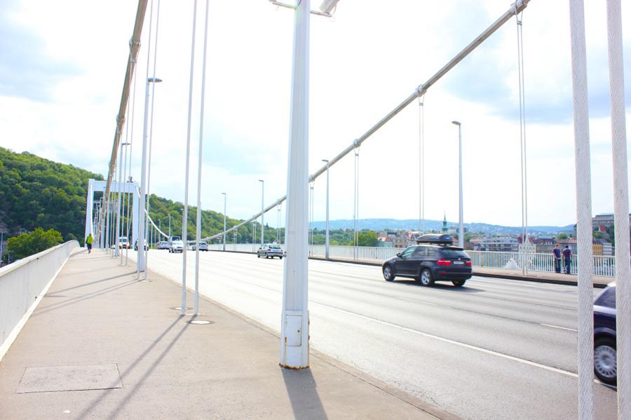 elizabeth-bridge