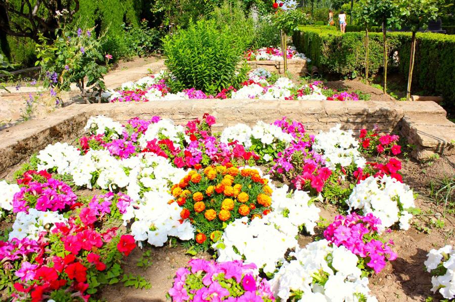 jardins-del-partal-2