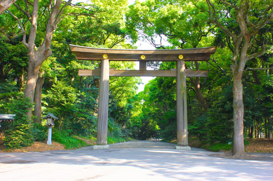 meiji-shrine-1