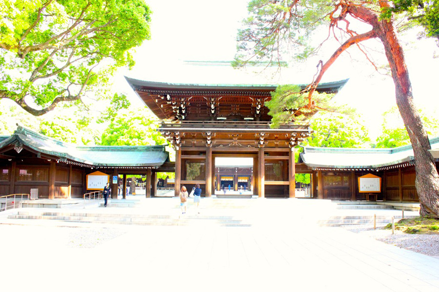 meiji-shrine-3