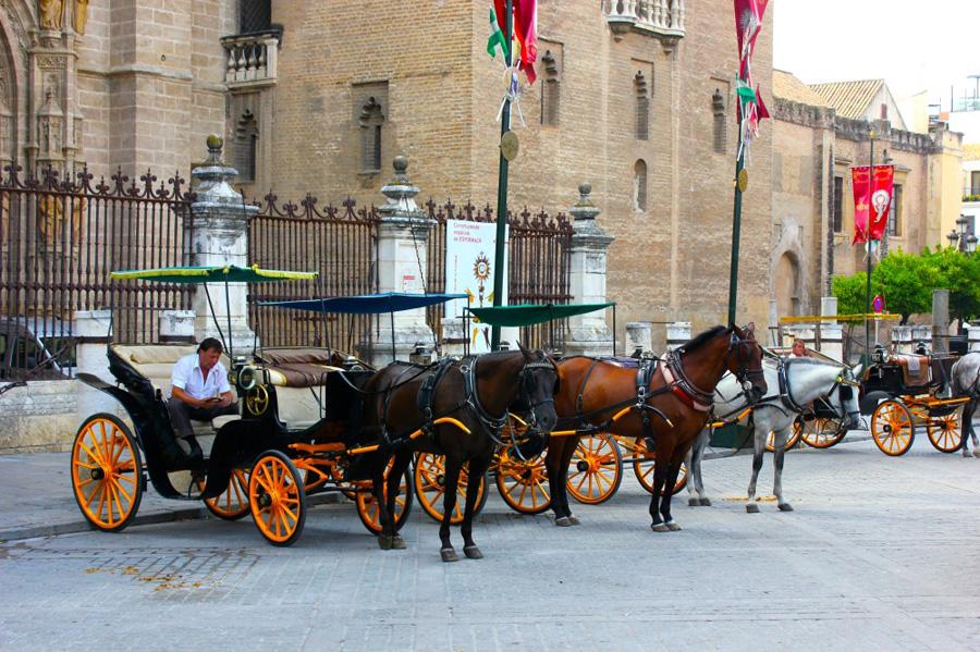 seville-city-center-5