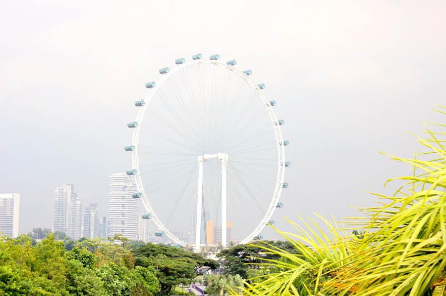 singapore-eye-1