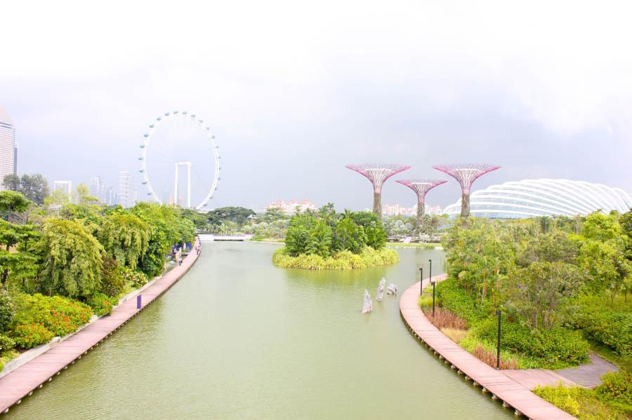 singapore-eye