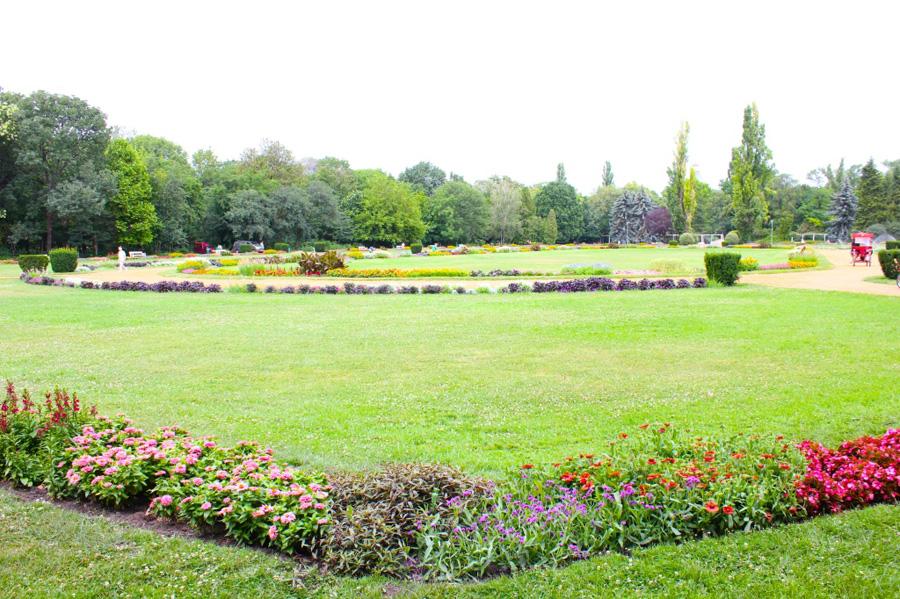 the-rose-garden1-1024x682